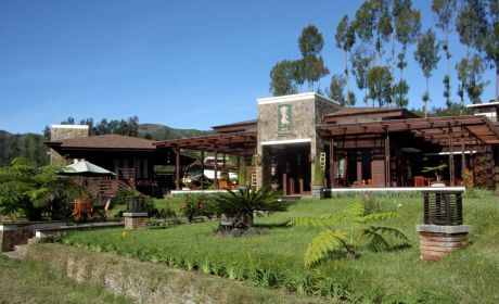 Java Banana (Jiwa Jawa) Hotel & Resort Bromo