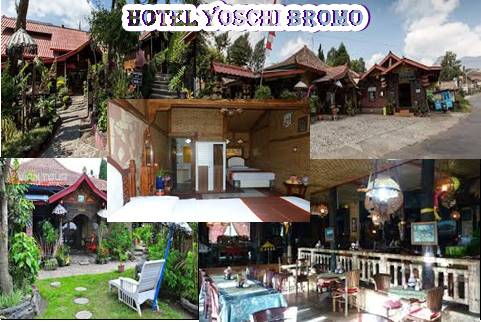 Hotel Yoschi Bromo